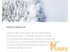 Уход за полостью рта: пенка укрепляющая Global White Total Pro 50ml  4605370005264
