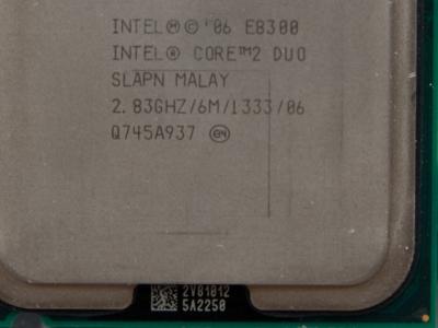 cpu s-775 core2duo-e8300 oem